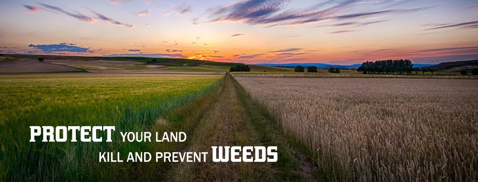 406 Weed Control - slideshow2